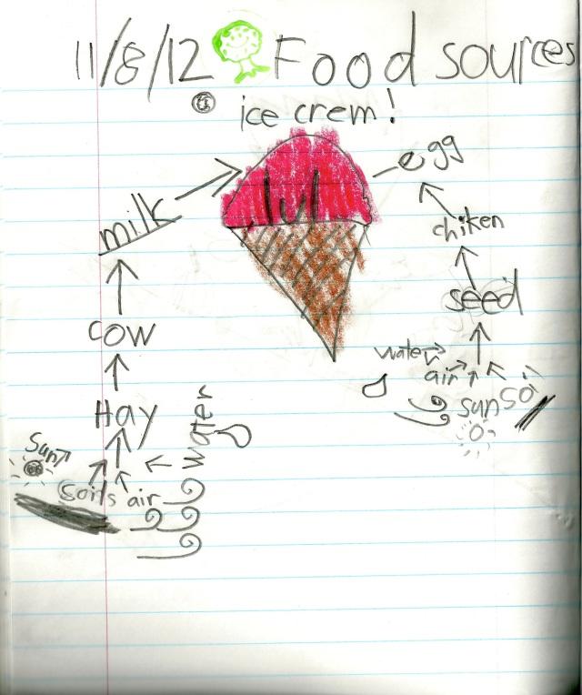 1st Grade Food Source Diagram Example