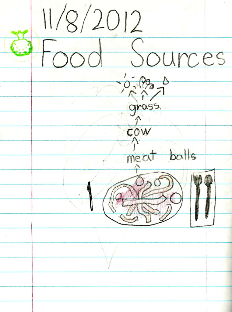 1st Grade Food Sources Diagram Example 2