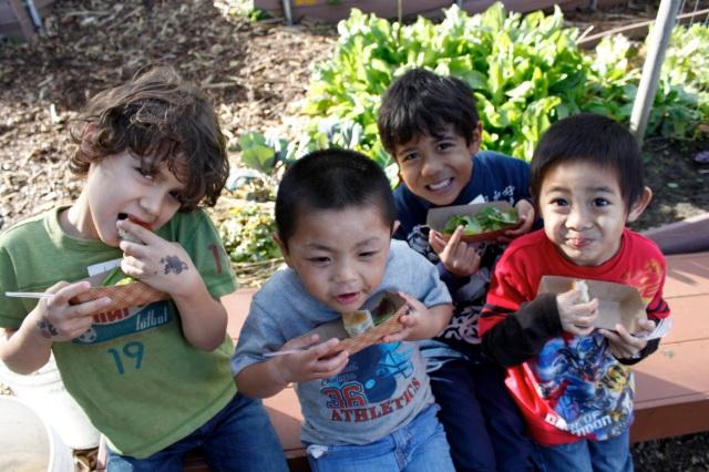 Kinder Salad Party