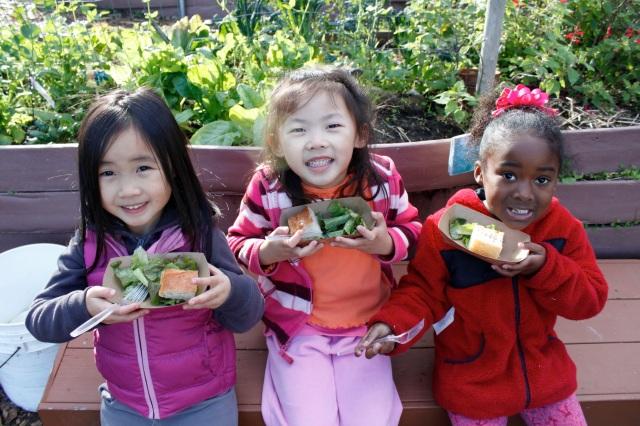 Kinders Eating Salad in the Garden