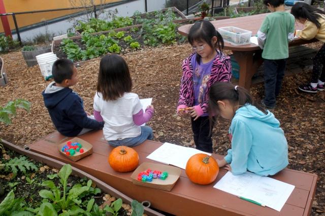 Working On Math in the Garden
