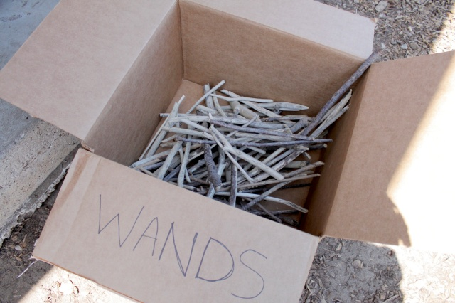 Driftwood Wand Box