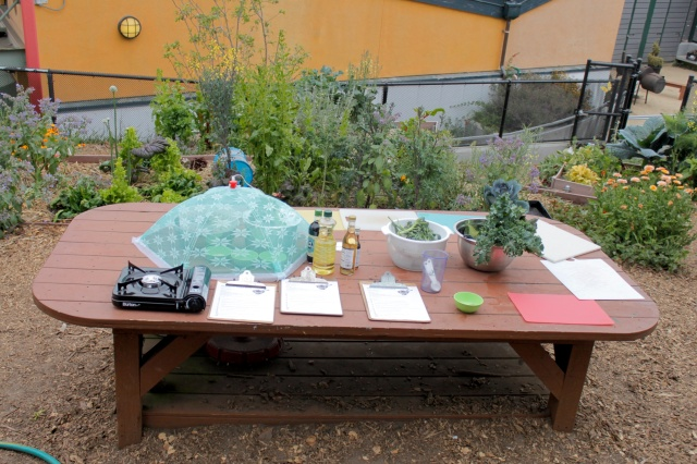 Brassica Fried Rice Outdoor Kitchen Set-up