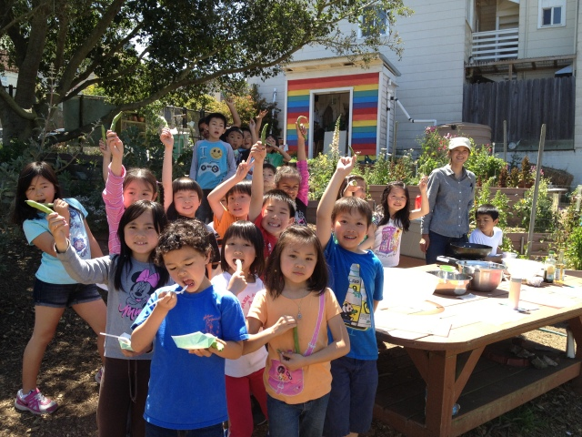 Harvested Fava Beans and Brassica Cooking. Photo by Lila Luk, 2nd Grade Teacher.
