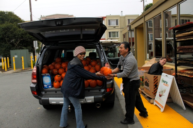 Andronico's Pumpkin Pick Up