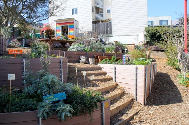 Fall 2013 Garden