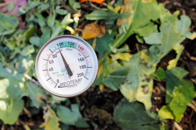 School Garden Compost Pile