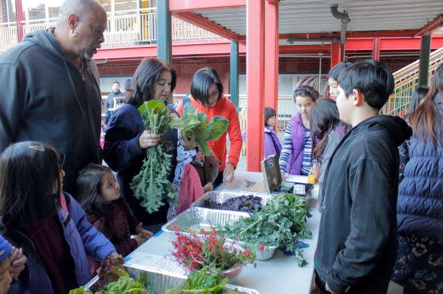 Fall Garden Market 2013