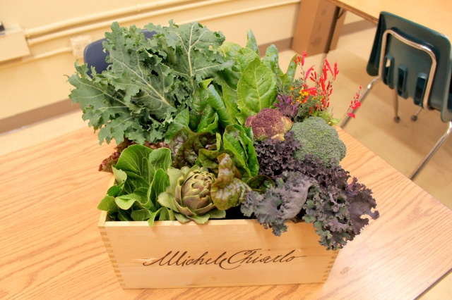 Thank you to the Moore Family for your support and bidding on the Garden Veggie Box!