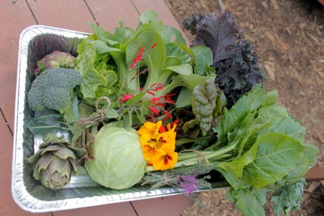 Fall Garden Bounty Veggie Box 2013