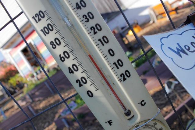 School Garden Thermometer