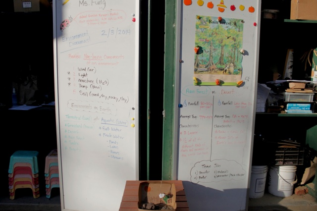 Environment Diorama Instructor's Board